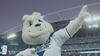 Mascot Madness: Canterbury Bulldogs